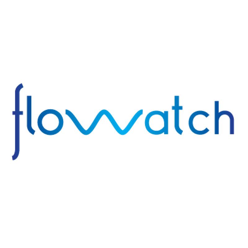 FloWatch Ltd